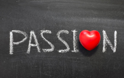Passion to Profit | How to build a business doing what you love